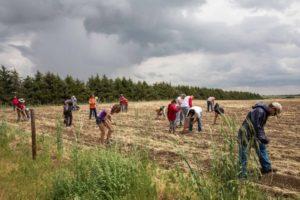 ponca_cornplanting_group_maryanne