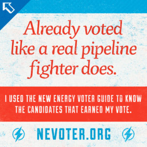 NEV-ShareGraphic_IVoted2014