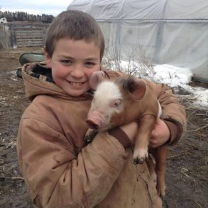family farm_lb176